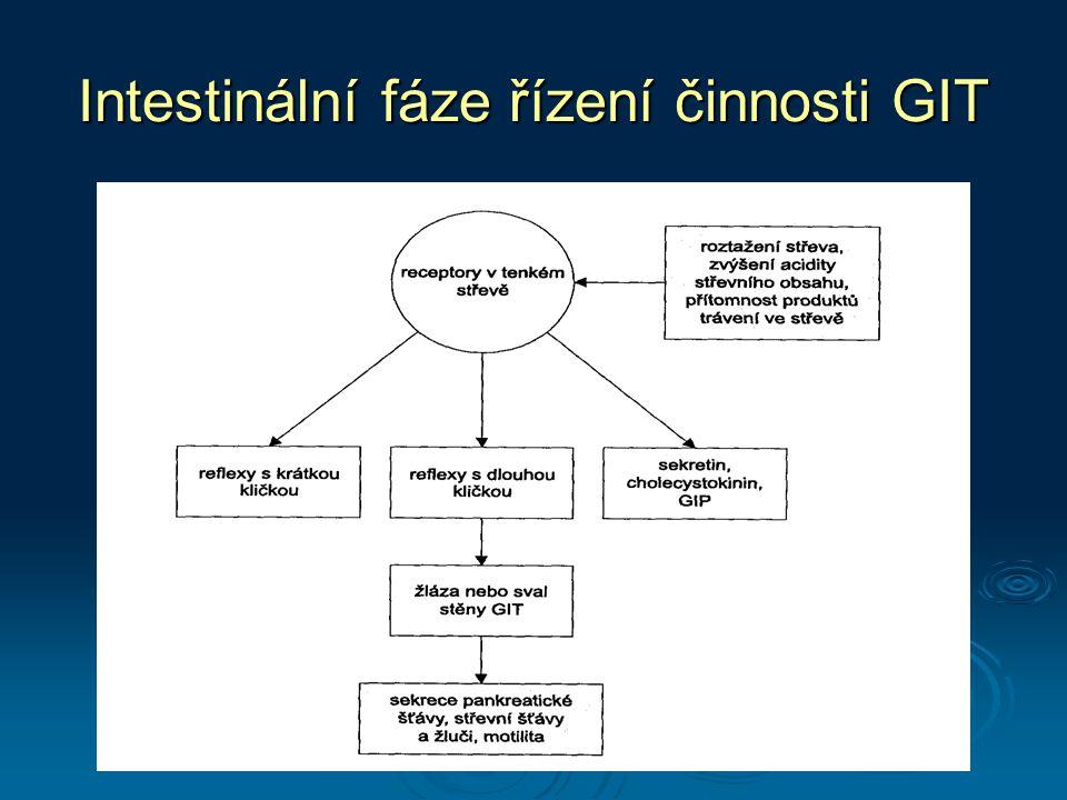 Intestinální fáze řízení činnosti GIT