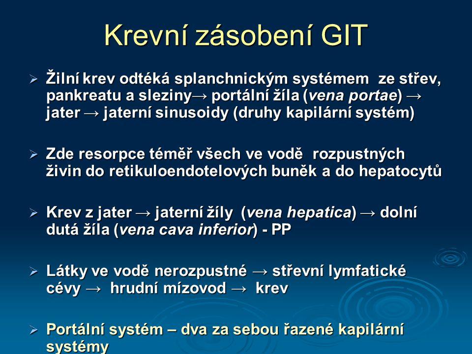 Krevní zásobení GIT