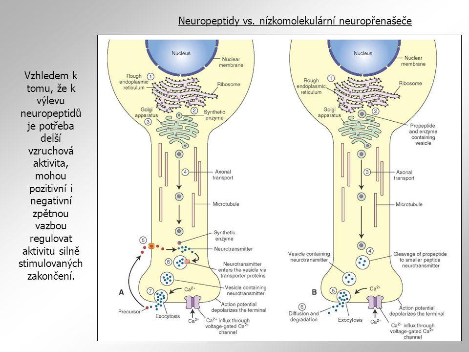 Neuropeptidy vs. nízkomolekulární neuropřenašeče