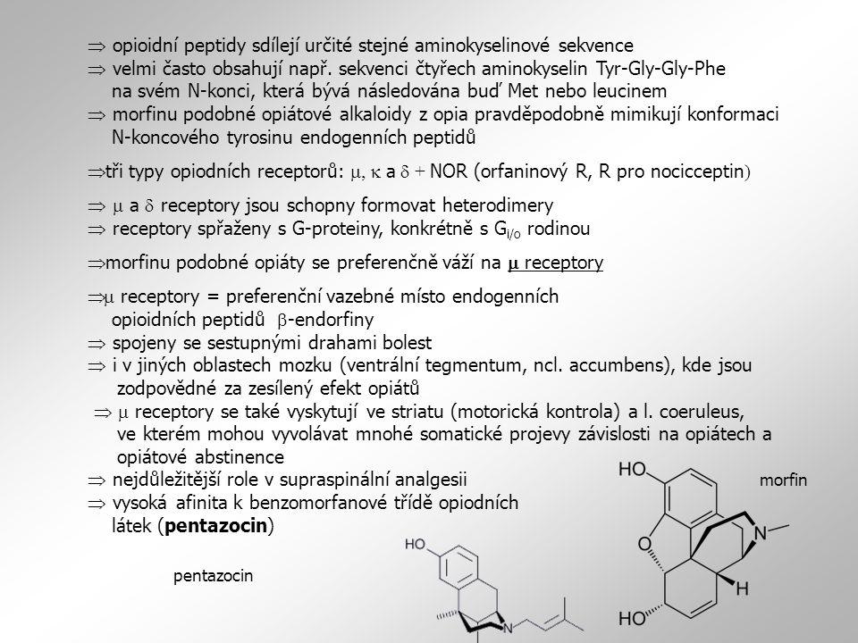 morfinu podobné opiáty se preferenčně váží na m receptory