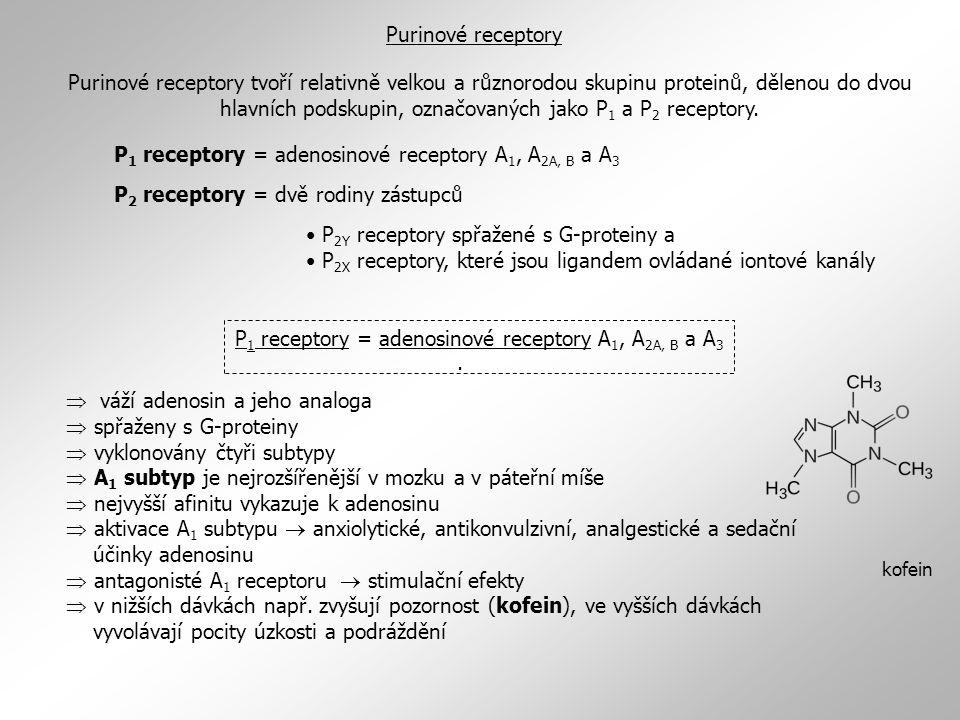 P1 receptory = adenosinové receptory A1, A2A, B a A3