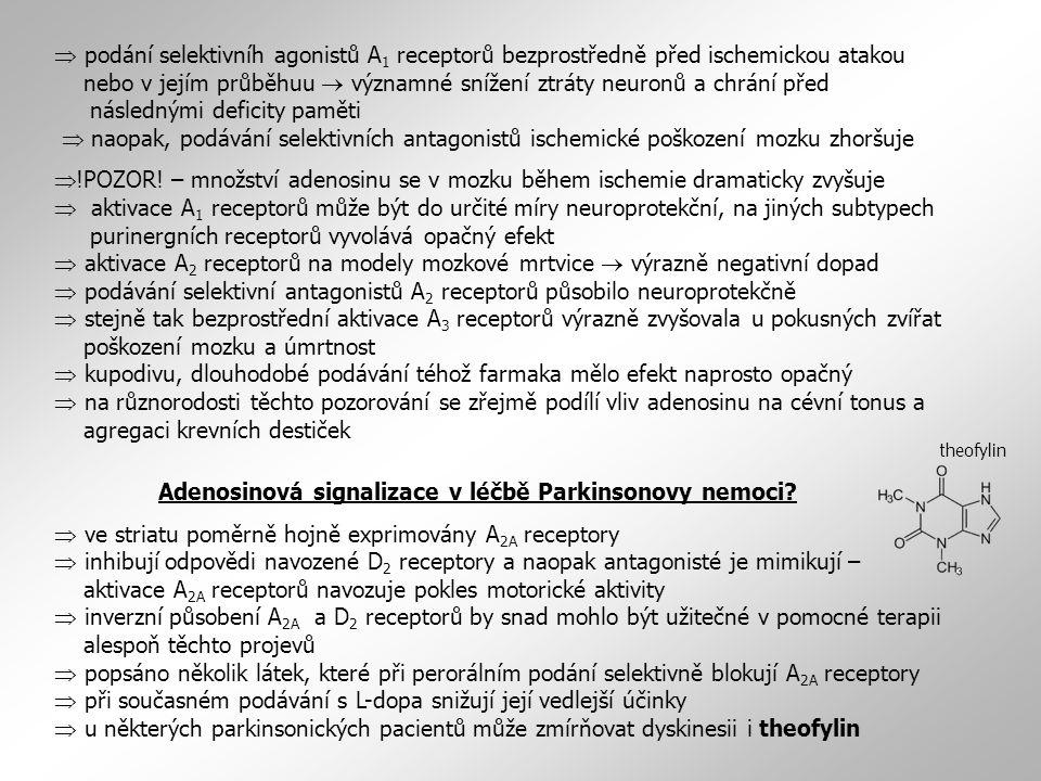 Adenosinová signalizace v léčbě Parkinsonovy nemoci