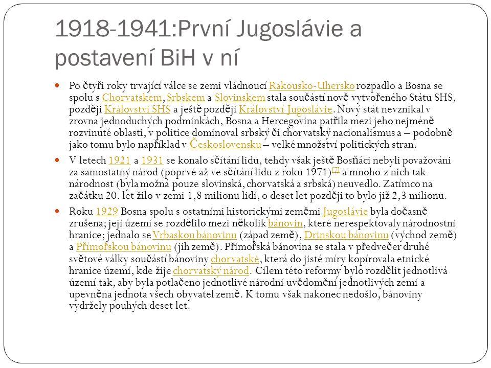 1918-1941:První Jugoslávie a postavení BiH v ní