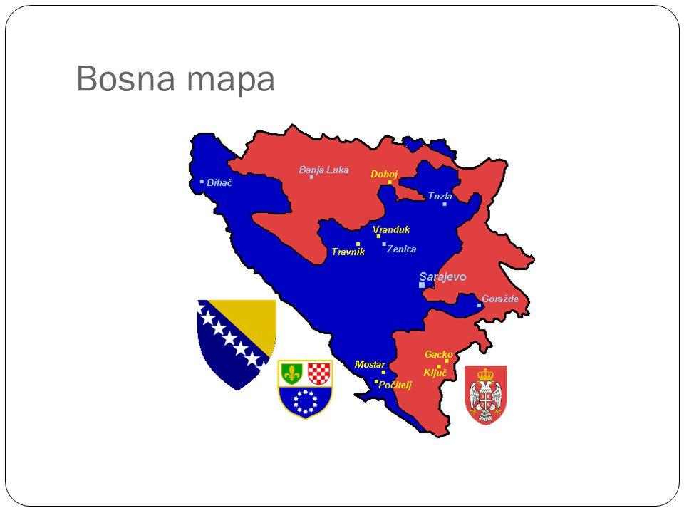 Bosna mapa