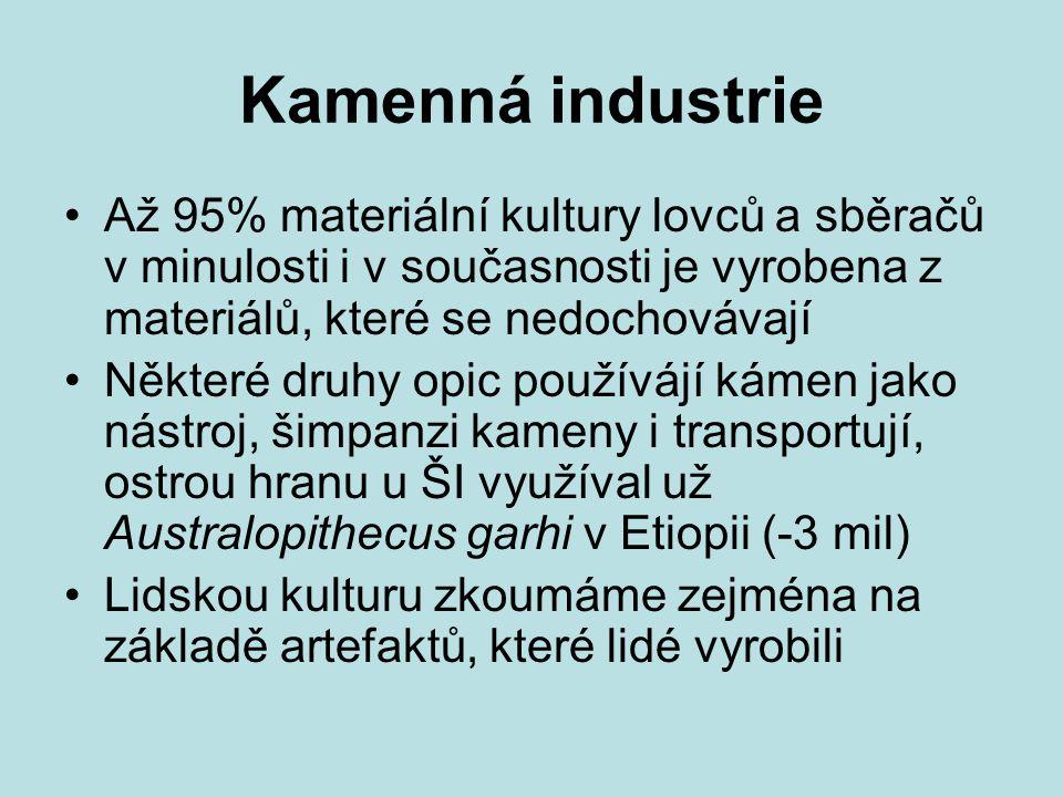 Kamenná industrie Až 95% materiální kultury lovců a sběračů v minulosti i v současnosti je vyrobena z materiálů, které se nedochovávají.