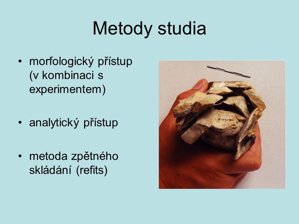 Metody studia morfologický přístup (v kombinaci s experimentem)
