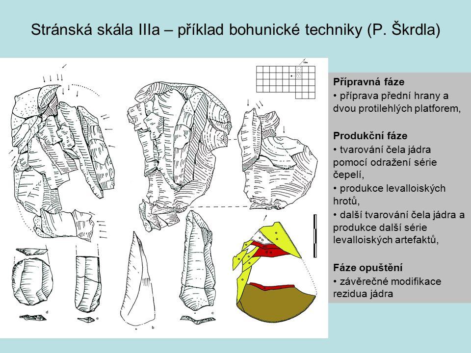 Stránská skála IIIa – příklad bohunické techniky (P. Škrdla)