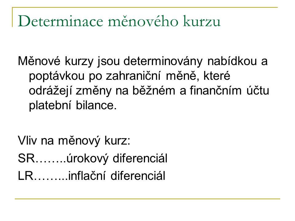 Determinace měnového kurzu