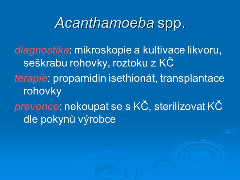 Acanthamoeba spp. diagnostika: mikroskopie a kultivace likvoru, seškrabu rohovky, roztoku z KČ.