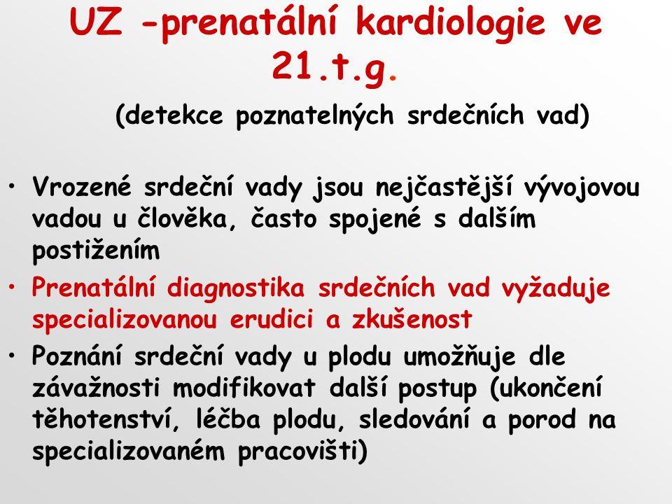 UZ -prenatální kardiologie ve 21. t. g