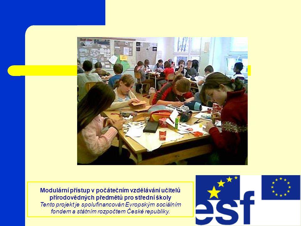 Modulární přístup v počátečním vzdělávání učitelů přírodovědných předmětů pro střední školy