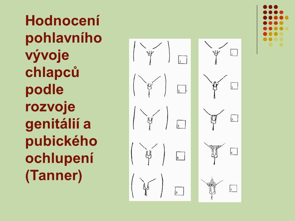 Hodnocení pohlavního vývoje chlapců podle rozvoje genitálií a pubického ochlupení (Tanner)