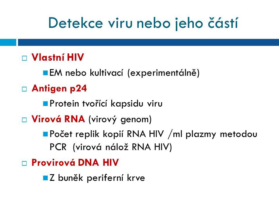 Detekce viru nebo jeho částí