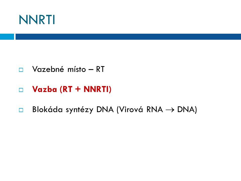 NNRTI Vazebné místo – RT Vazba (RT + NNRTI)