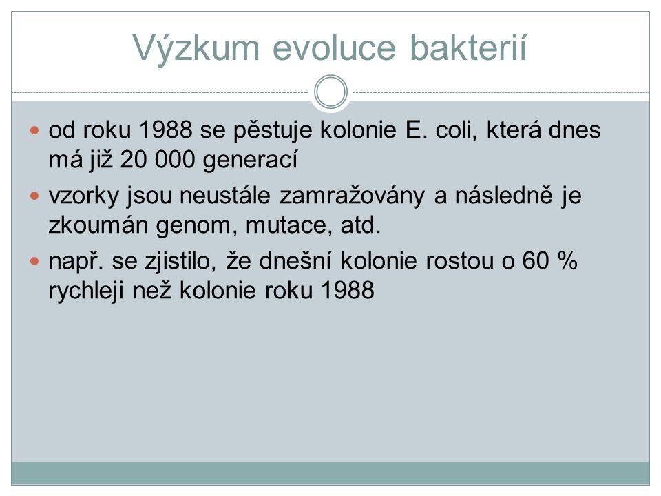 Výzkum evoluce bakterií