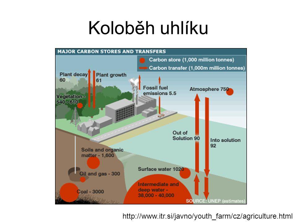 Koloběh uhlíku http://www.itr.si/javno/youth_farm/cz/agriculture.html
