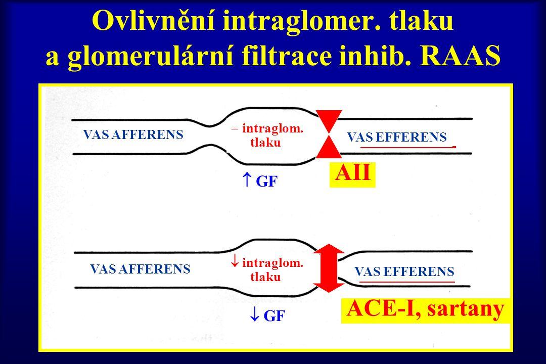 Ovlivnění intraglomer. tlaku a glomerulární filtrace inhib. RAAS