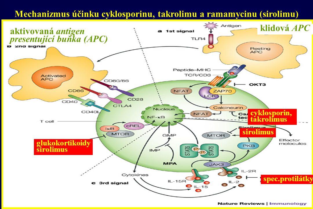 Mechanizmus účinku cyklosporinu, takrolimu a ramamycinu (sirolimu)