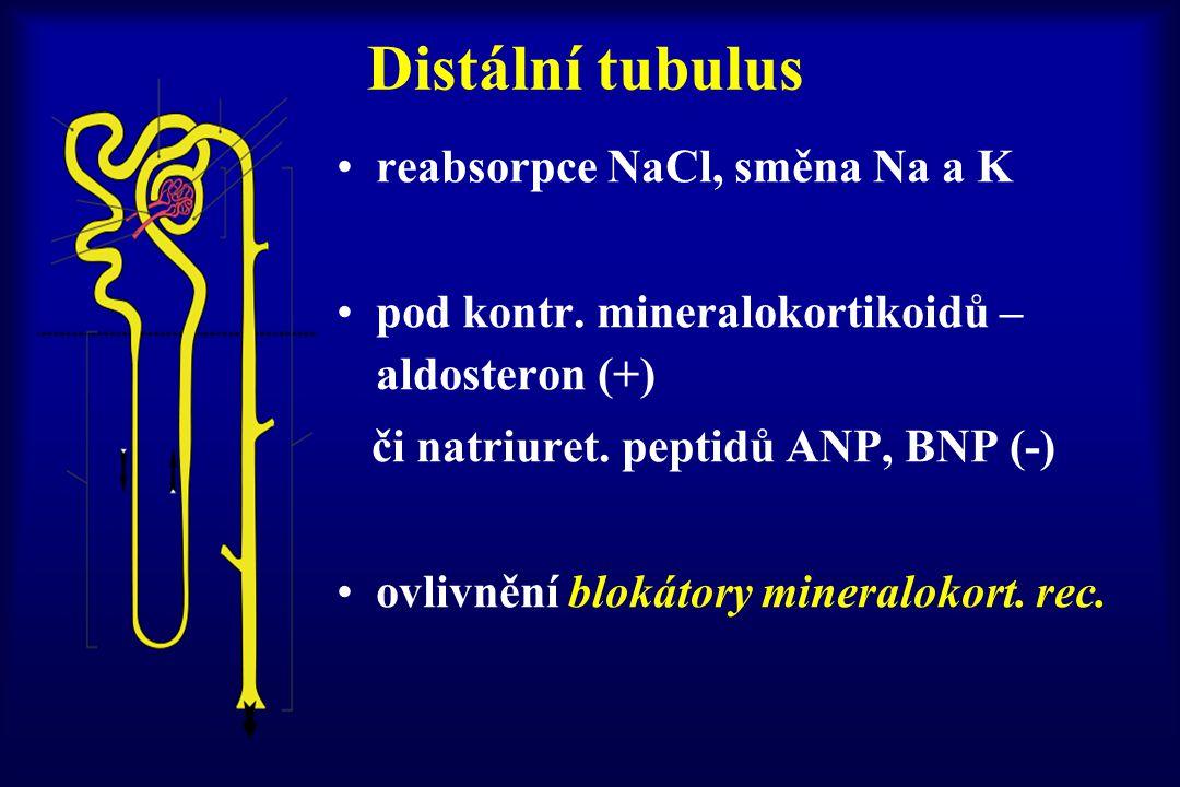 Distální tubulus reabsorpce NaCl, směna Na a K