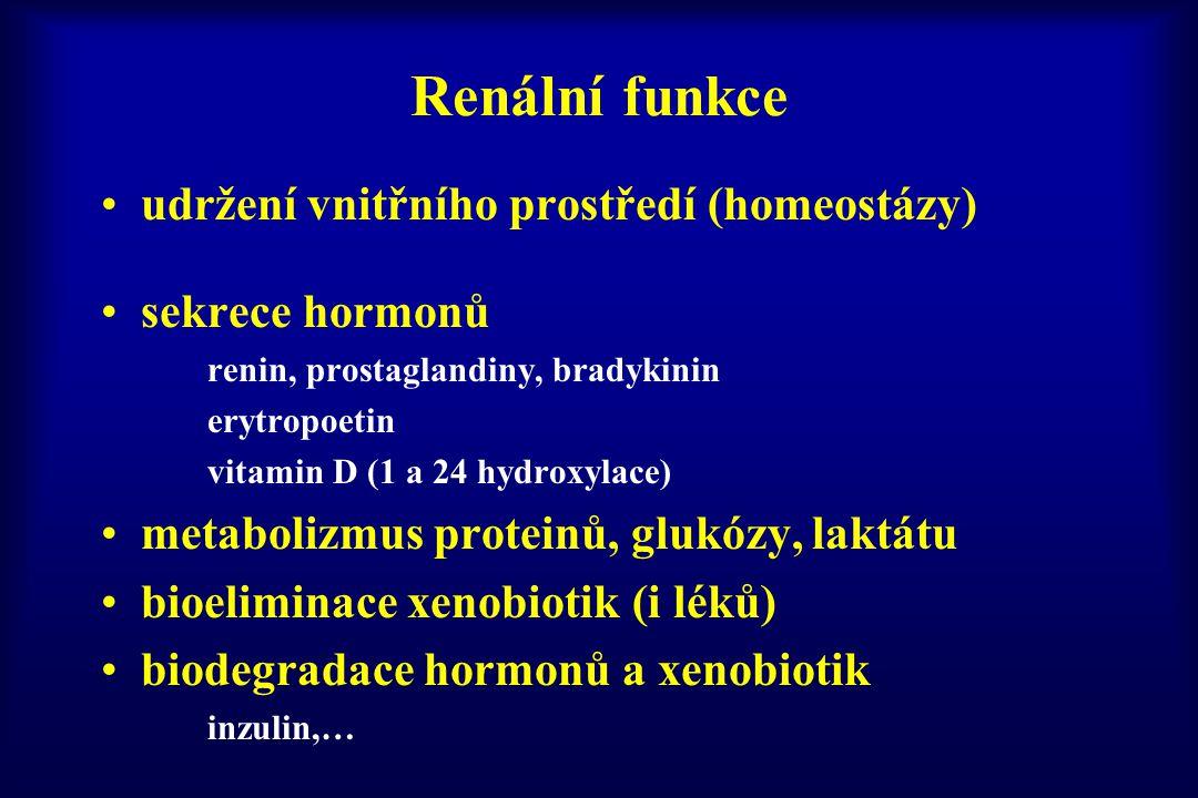 Renální funkce udržení vnitřního prostředí (homeostázy)