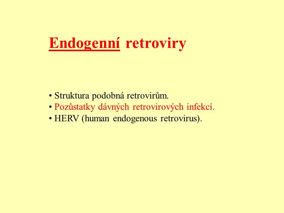 Endogenní retroviry • Struktura podobná retrovirům.