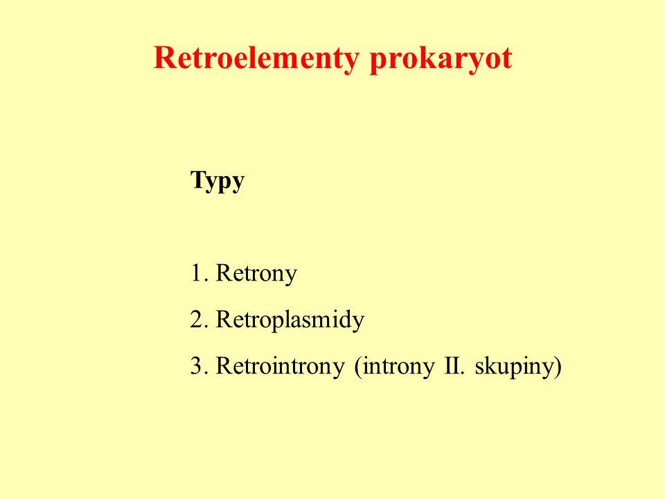 Retroelementy prokaryot