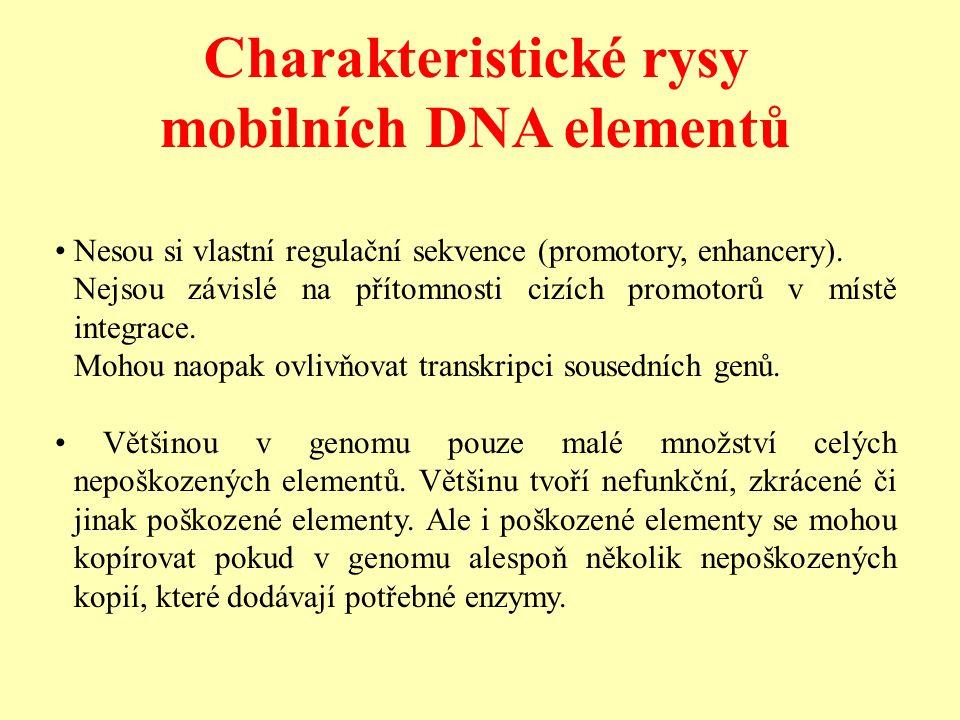 Charakteristické rysy mobilních DNA elementů