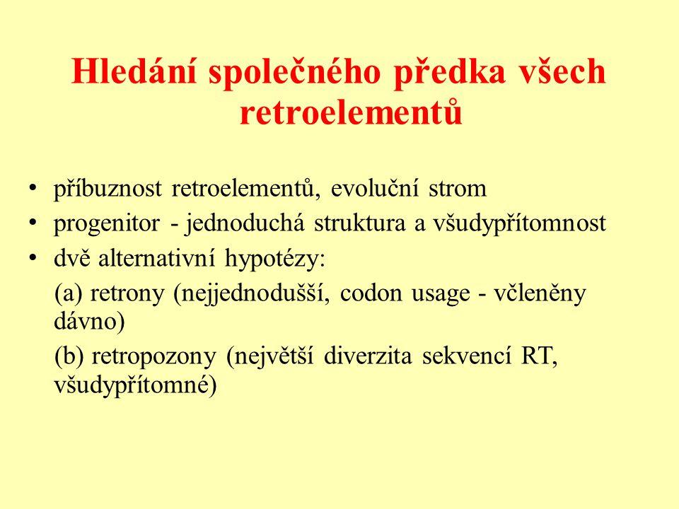 Hledání společného předka všech retroelementů