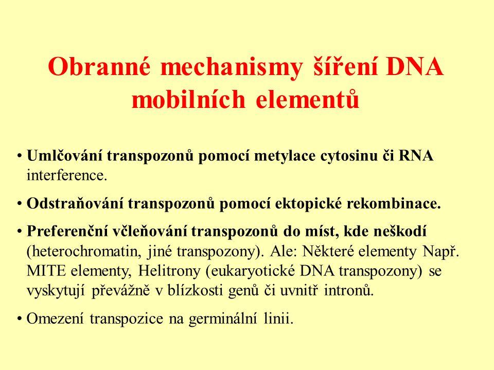 Obranné mechanismy šíření DNA mobilních elementů