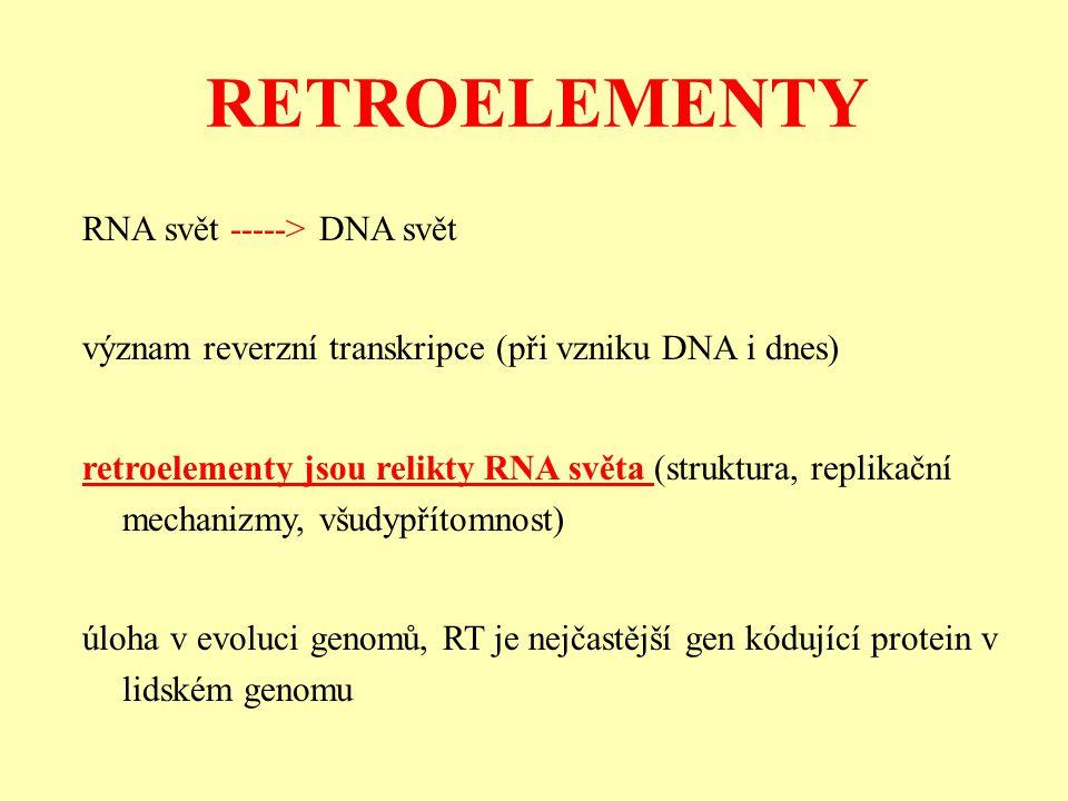 RETROELEMENTY RNA svět -----> DNA svět