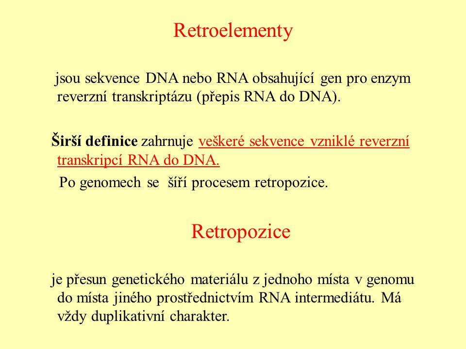 Retroelementy Retropozice