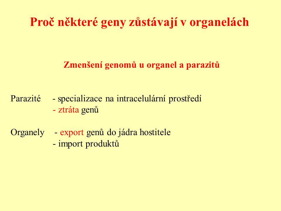 Zmenšení genomů u organel a parazitů