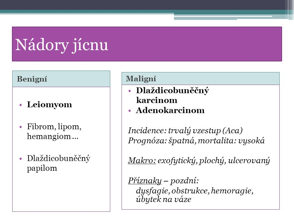 Nádory jícnu Dlaždicobuněčný karcinom Leiomyom Adenokarcinom
