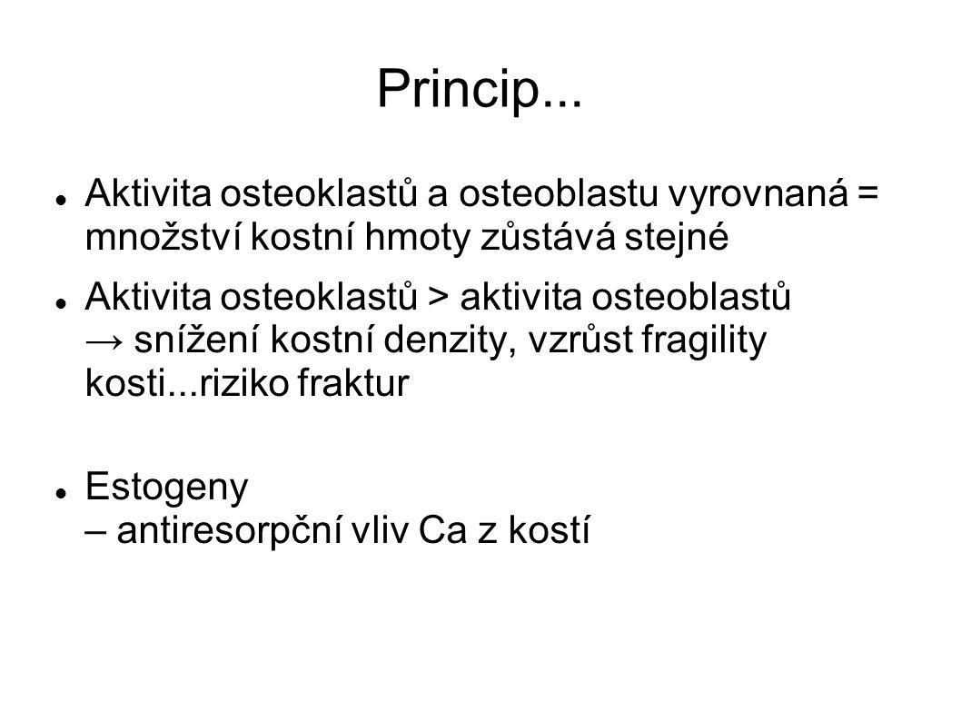 Princip... Aktivita osteoklastů a osteoblastu vyrovnaná = množství kostní hmoty zůstává stejné.