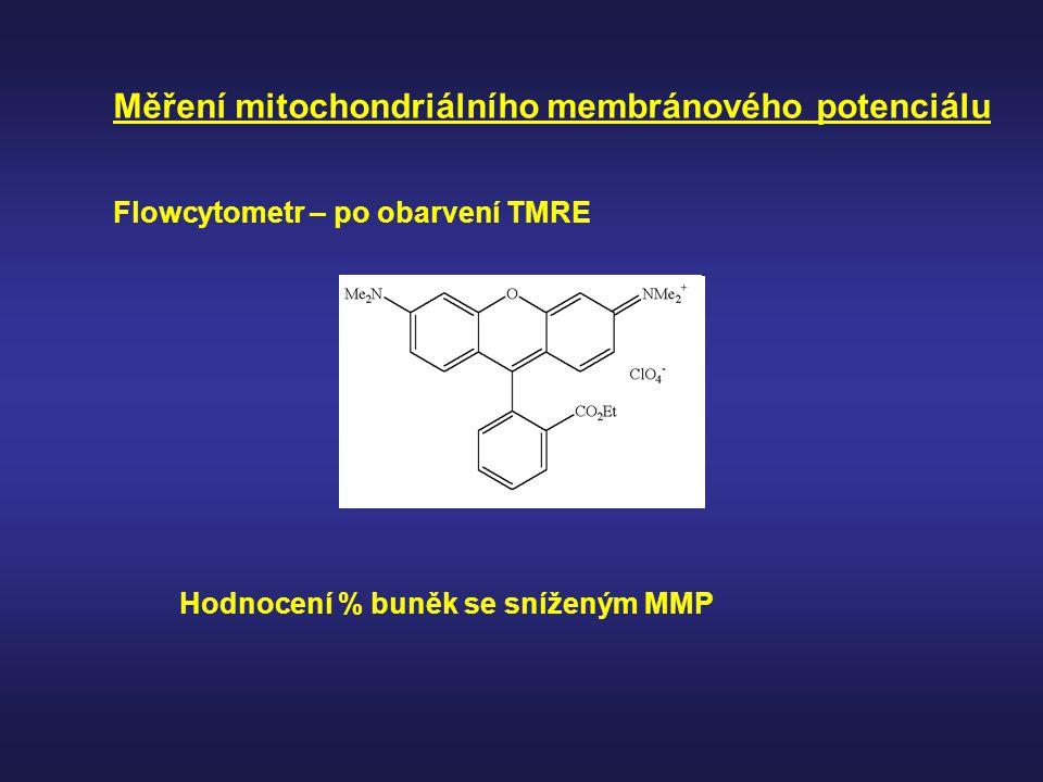 Měření mitochondriálního membránového potenciálu