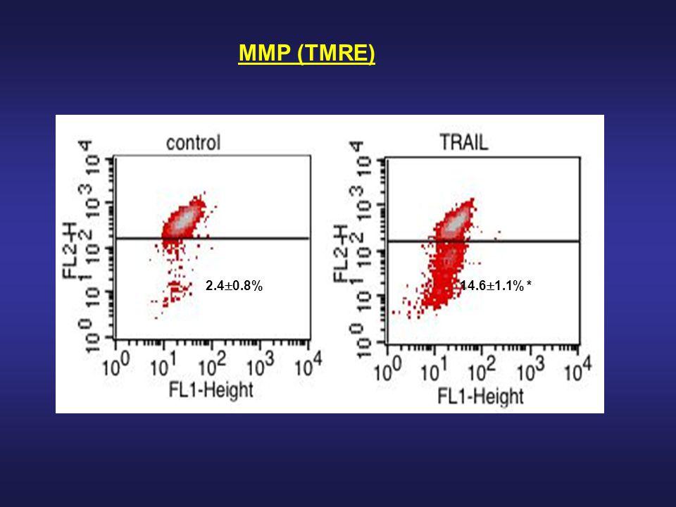 MMP (TMRE) 2.40.8% 14.61.1% *