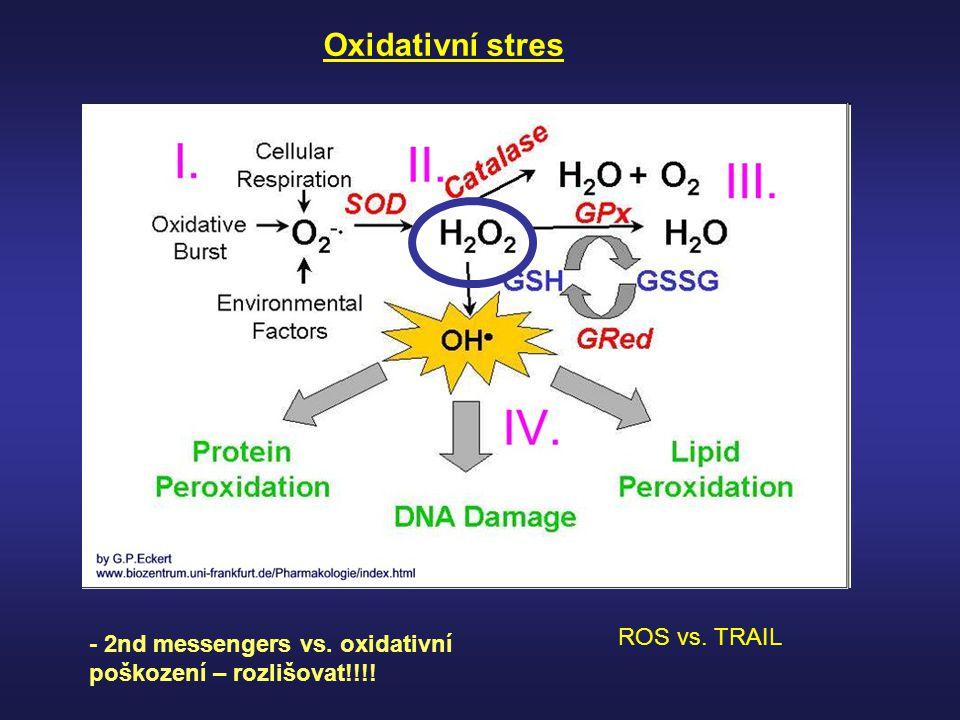 Oxidativní stres ROS vs. TRAIL
