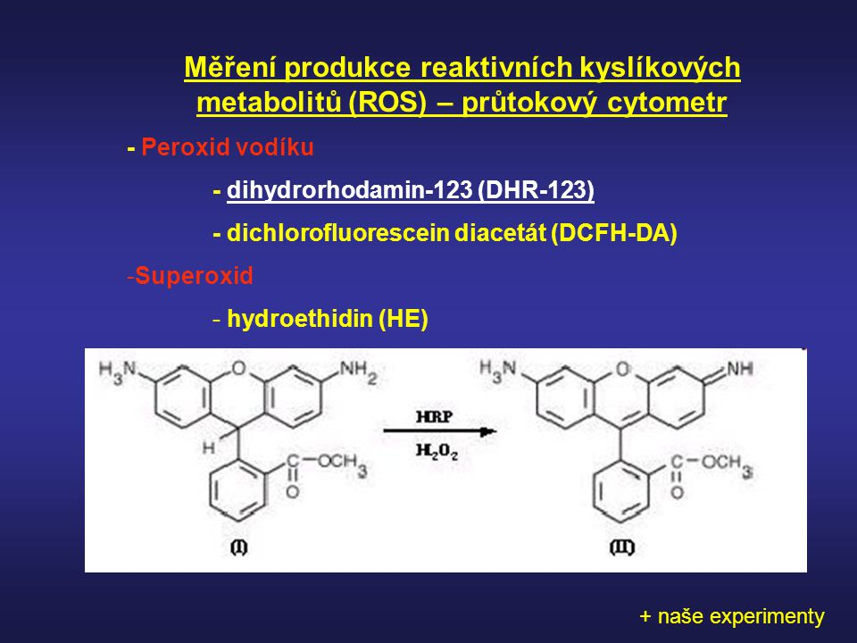 Měření produkce reaktivních kyslíkových metabolitů (ROS) – průtokový cytometr