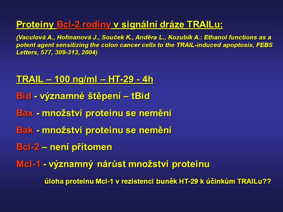 Proteiny Bcl-2 rodiny v signální dráze TRAILu:
