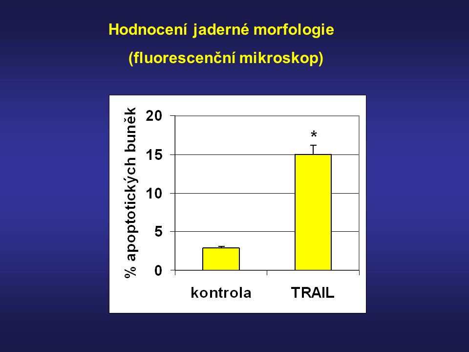 Hodnocení jaderné morfologie (fluorescenční mikroskop)