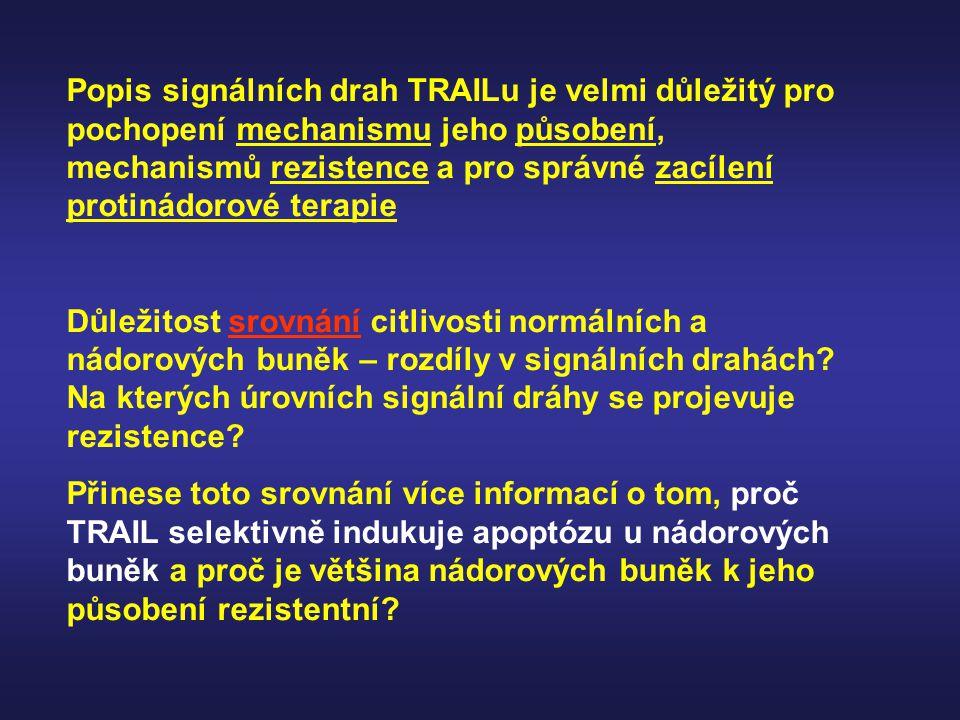 Popis signálních drah TRAILu je velmi důležitý pro pochopení mechanismu jeho působení, mechanismů rezistence a pro správné zacílení protinádorové terapie