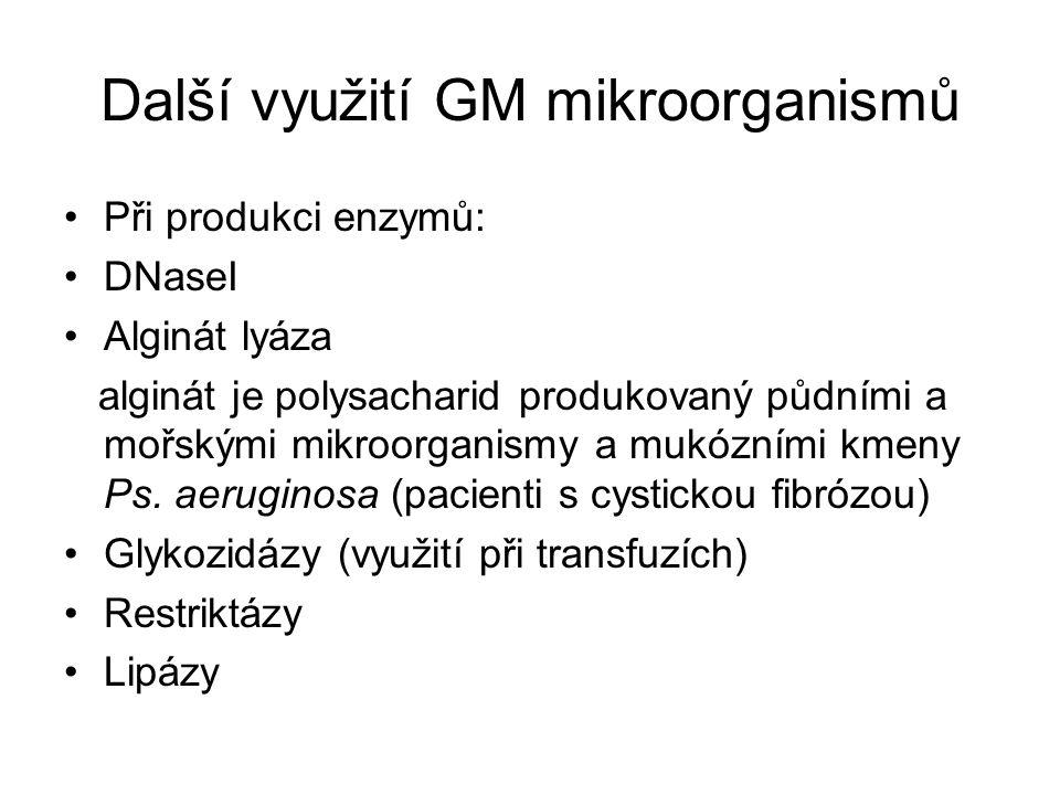 Další využití GM mikroorganismů