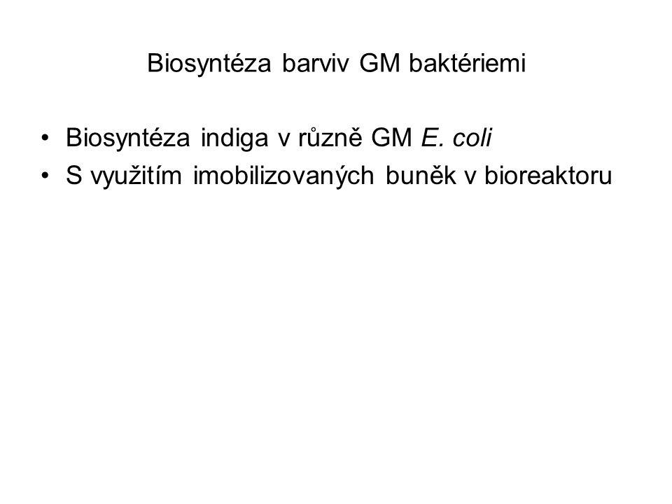 Biosyntéza barviv GM baktériemi