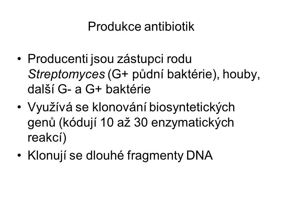 Produkce antibiotik Producenti jsou zástupci rodu Streptomyces (G+ půdní baktérie), houby, další G- a G+ baktérie.