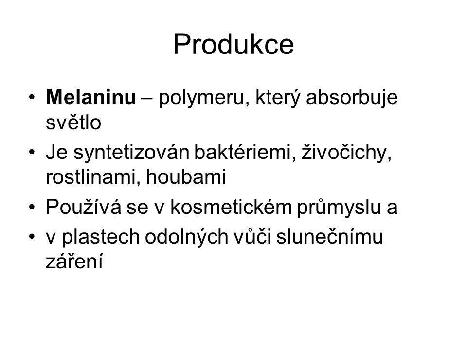 Produkce Melaninu – polymeru, který absorbuje světlo
