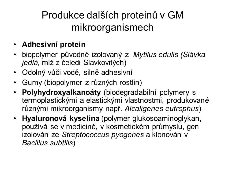 Produkce dalších proteinů v GM mikroorganismech