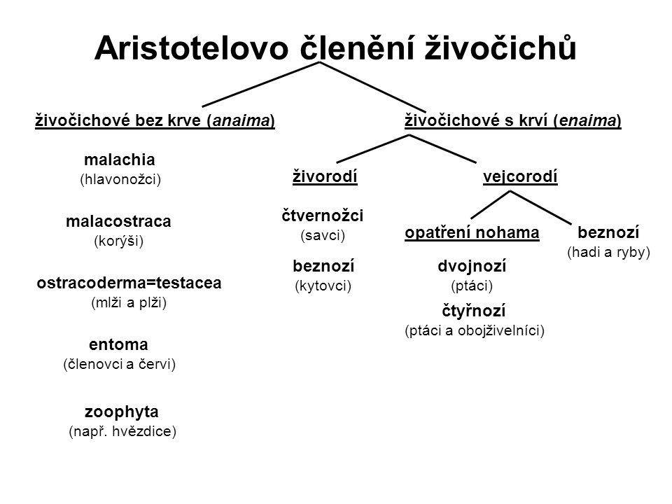 Aristotelovo členění živočichů