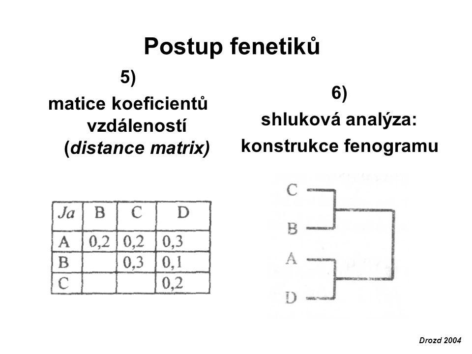 matice koeficientů vzdáleností (distance matrix)