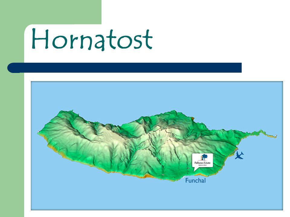 Hornatost