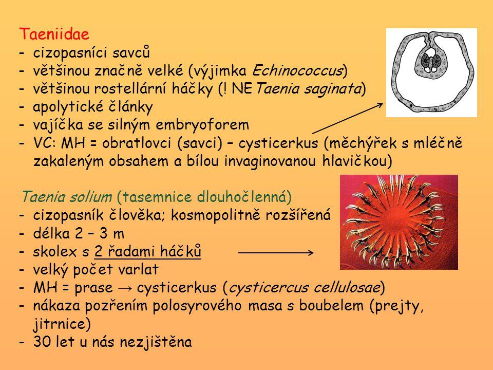 Taeniidae - cizopasníci savců